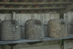 Heidebienen-Mitte-August-in-der-Tracht-min